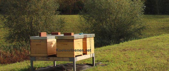 Gebrauchsbelegstelle Rommerskirchen (www.Buckfast-Belegstelle.org)