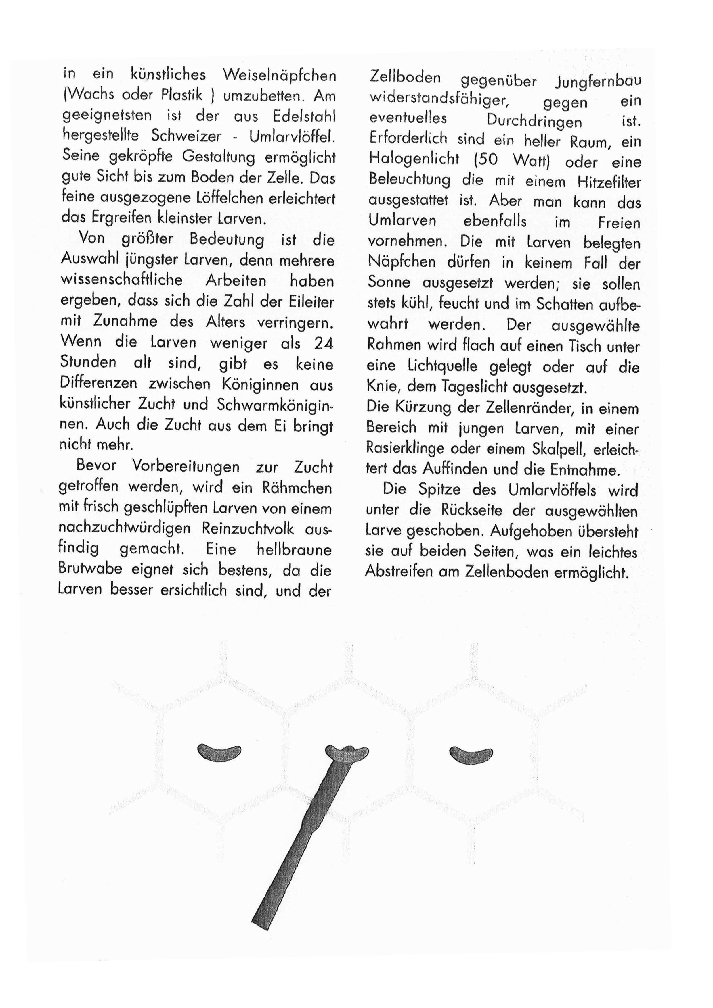 Lb_Beien-Zeitung_M_00003