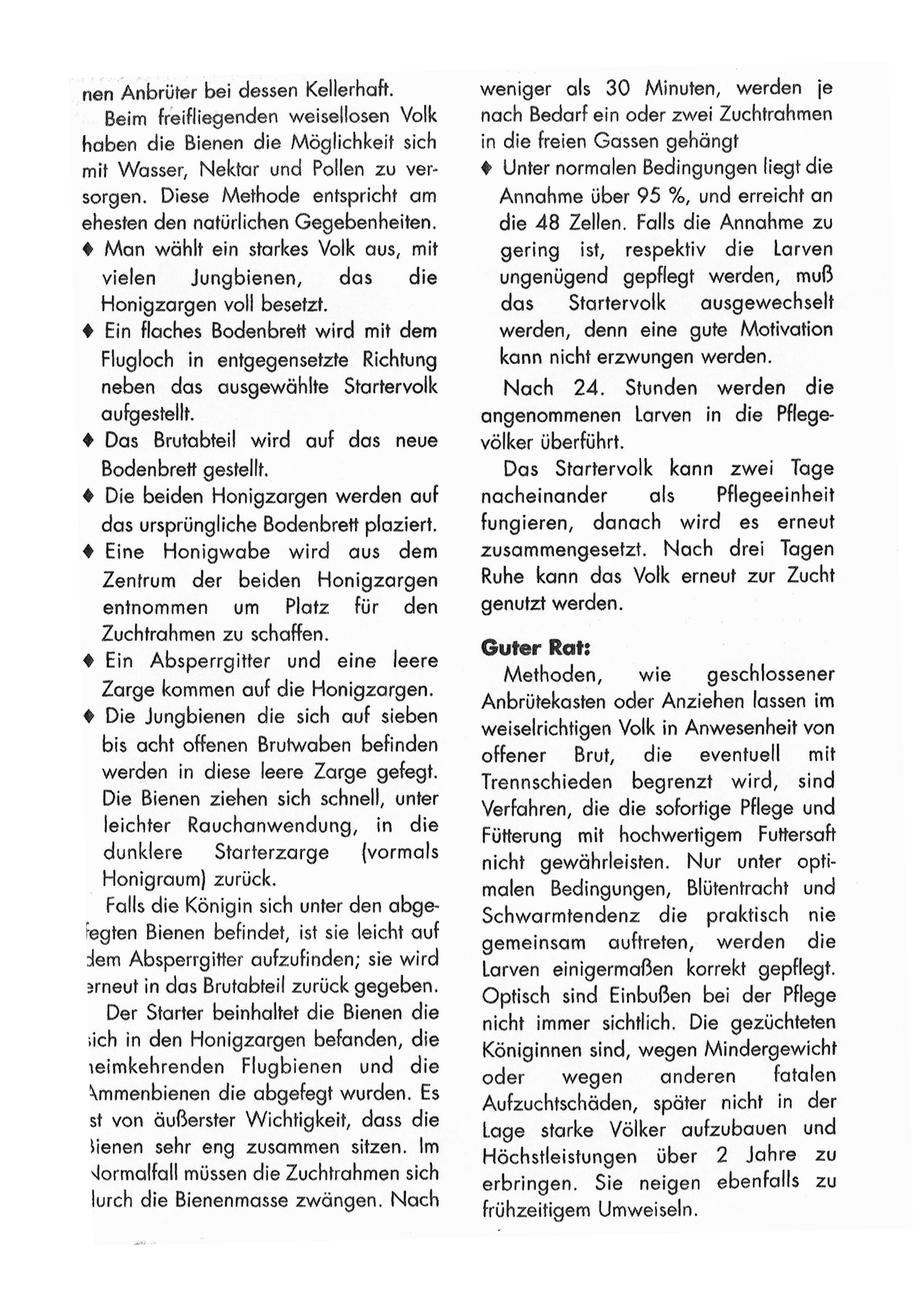 Lb_Beien-Zeitung_M_00005