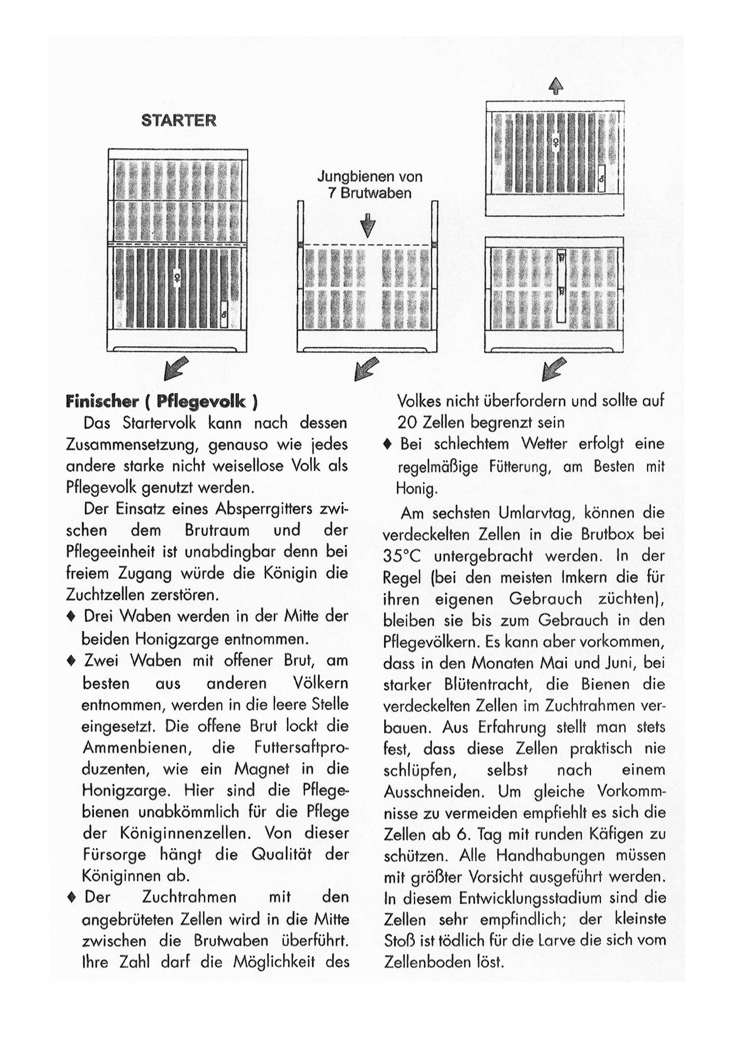 Lb_Beien-Zeitung_M_00006